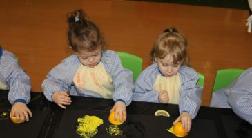 Esquirols tasted lemons and painted with them!